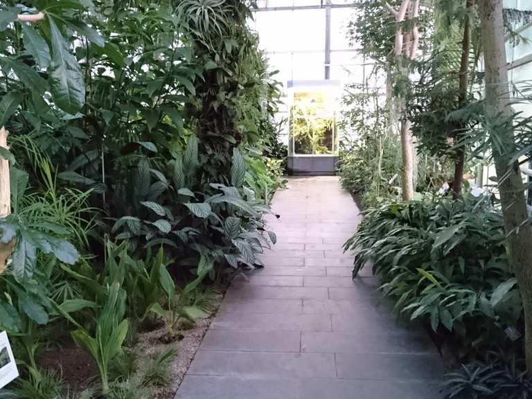 Botanischer Garten Chemnitz Sachsen Deutschland Radtouren Tipps