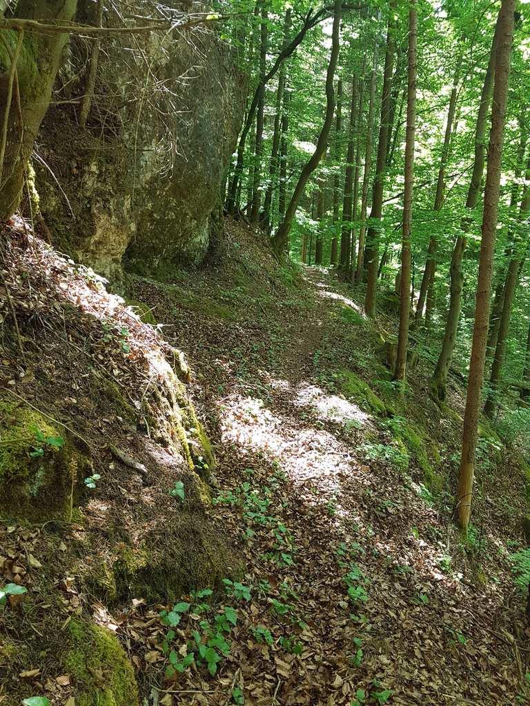 Singletrail bayreuth Diakonie Bayreuth ::