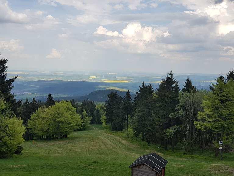 Inselsberg Höhe