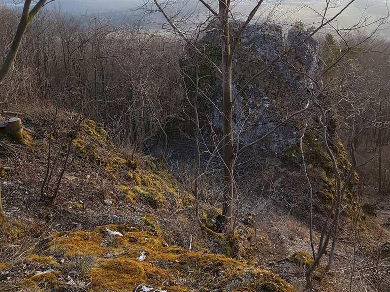 Mountainbike-Szene steuert einen Trail Park für Forchheim an