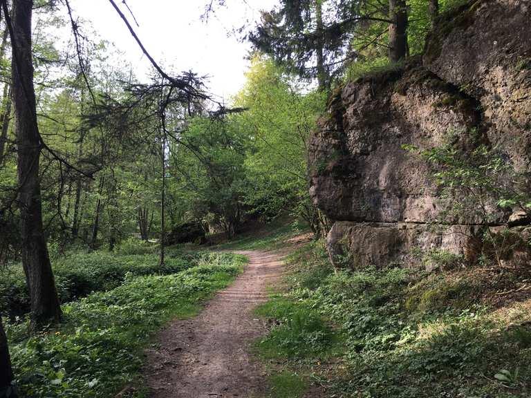Single amberg-sulzbach