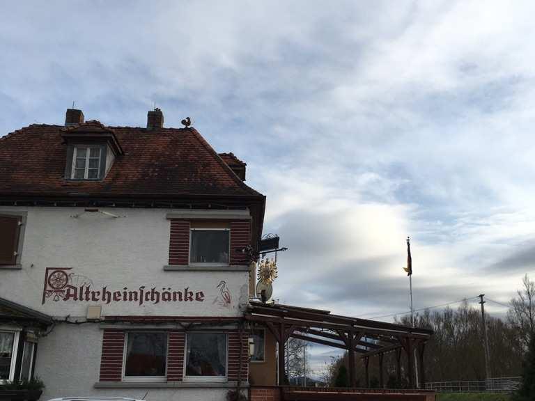 Altrheinschänke von Erfelden Runde von Mainz-Bischofsheim | Rennrad ...