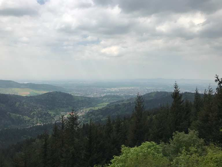 Singletrails freiburg