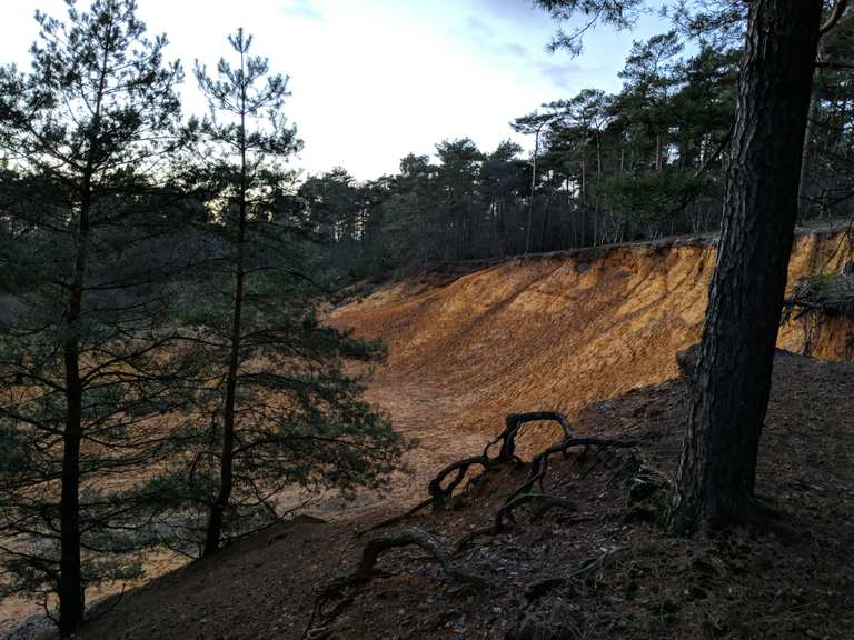 Hometrail Downhill 5 HeideKalkiCoesfeld