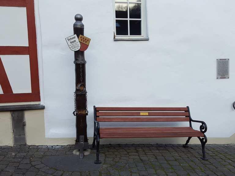 Schandbaum
