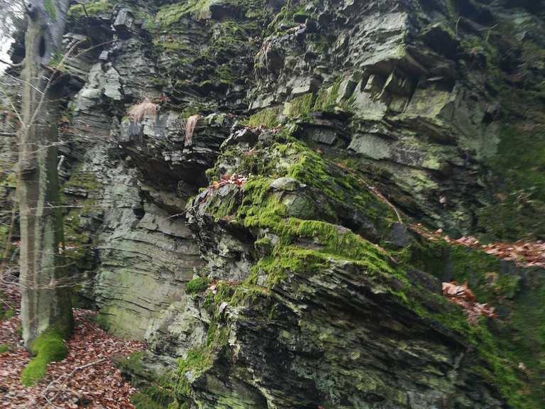 Felsklippen im Wald (Michelbacher Schweiz) - Usingen