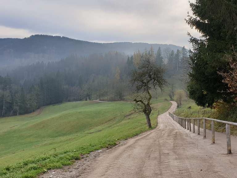 Single trail tegernsee