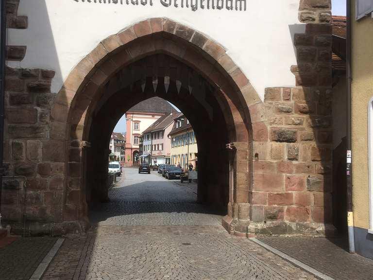 Singletrail gengenbach