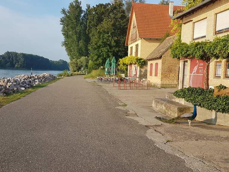 Radtouren Am Rhein Entlang