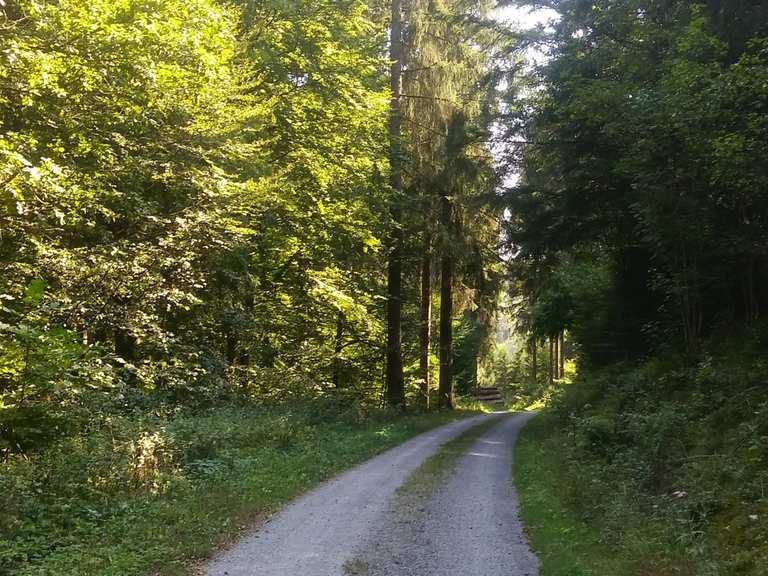 Radtouren Odenwald