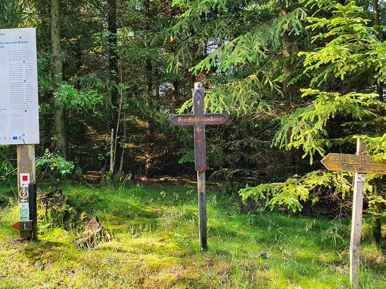 Singletrail odenwald