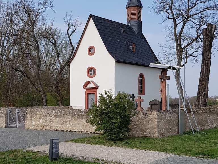 Mainspitze Raunheim