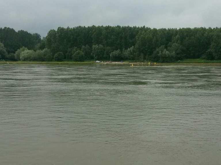 Rheinfähre Rheinstetten
