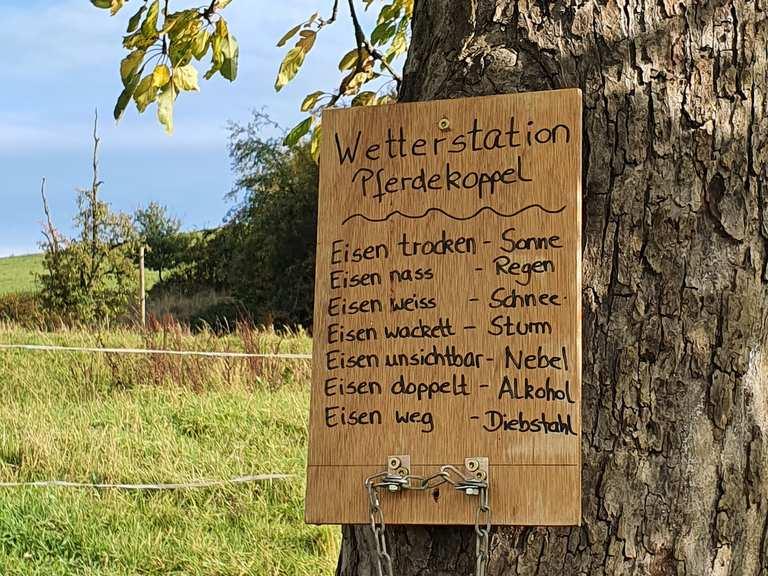 Schöne-Sprüche-Weg - Mörlenbach, Bergstraße | Wanderweg