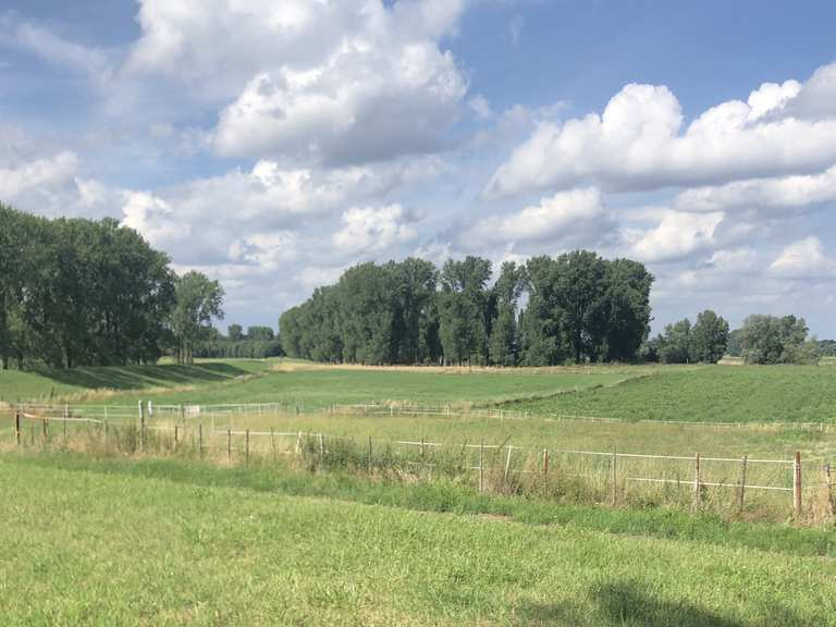 Leverkusen singletrail
