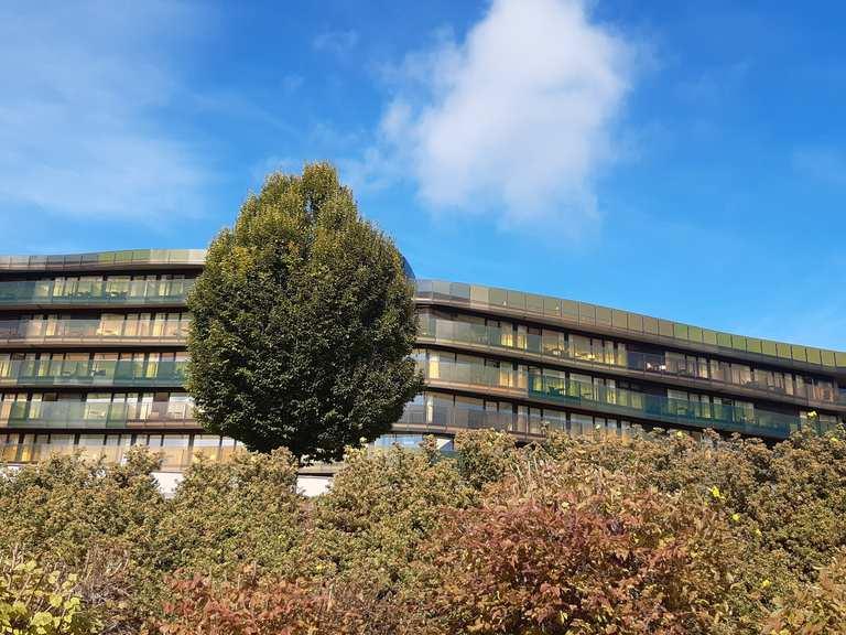 Single hotel rohrbach