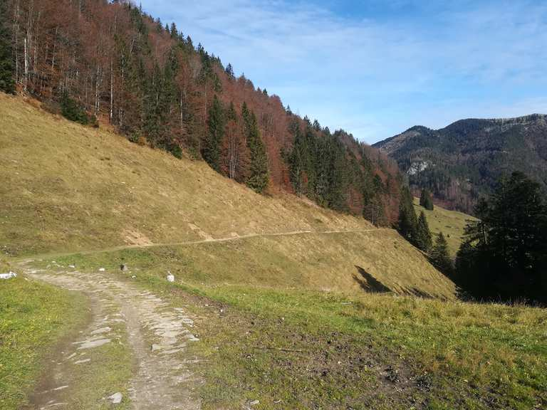 Singletrail rosenheim