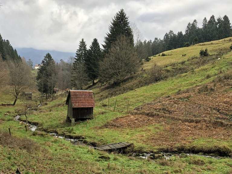 Forbach Glücksweg