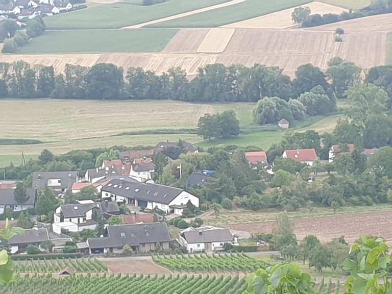 Wetter Horrheim