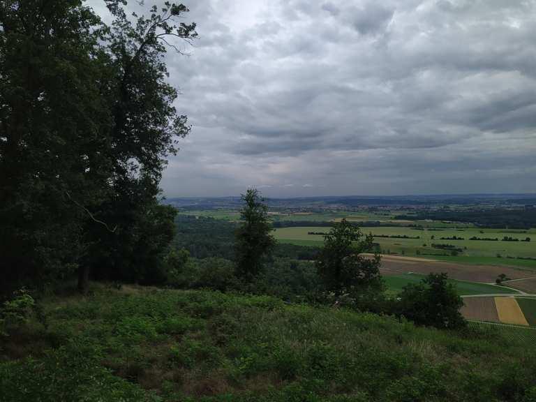 Single ludwigsburg