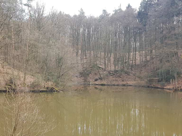 Singletrail ravensburg
