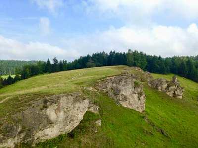 Die besten Trails im Harz