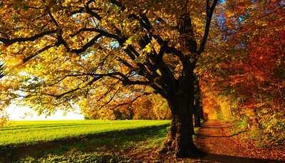 Traumhafte Herbstwanderungen um Berlin