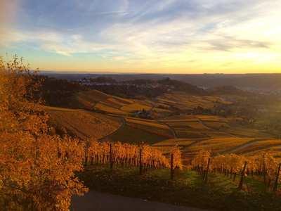 Die schönsten Herbstwanderungen um Stuttgart