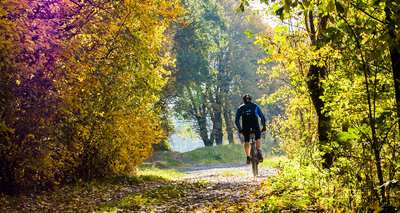 Colored leaves, mud and your bike in NRW