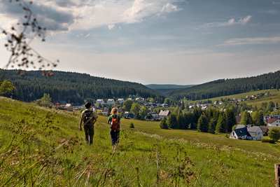 Kammweg path in the Ore Mountains - step in and relax