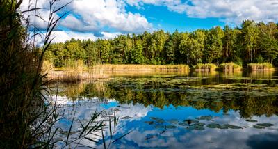 Fünf herrliche Seen-Wanderungen in Brandenburg