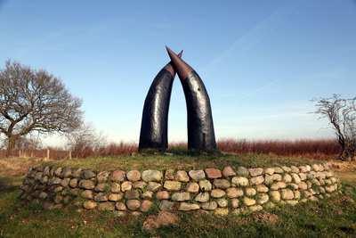Ochsenweg - Auf historischen Spuren durch Norddeutschland