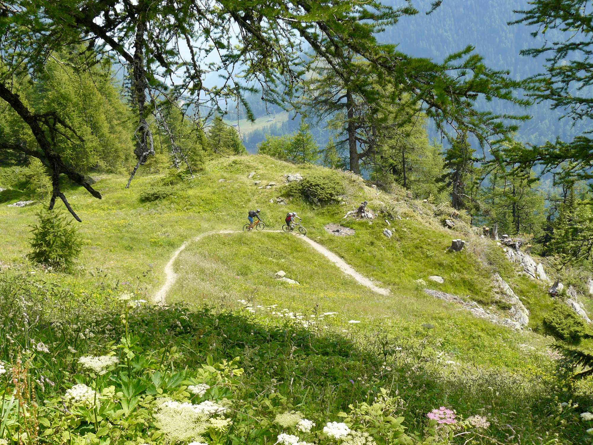 Up & down – mountain passes and singletracks for experts