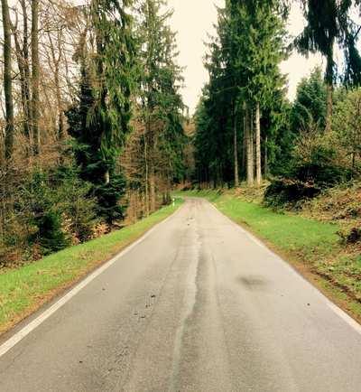 Kurz & knackig - Rennradpässe im Pfälzer Wald