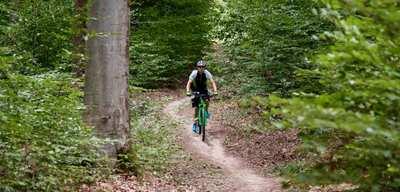 33 Trails durch Deutschlands Wälder