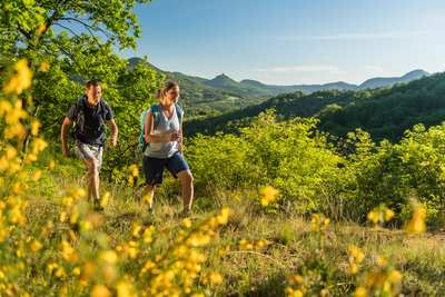 Palatinate hiking menu - pithy day tours