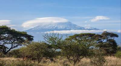 Kilimanjaro - From the Jungle to Africa's Rooftop