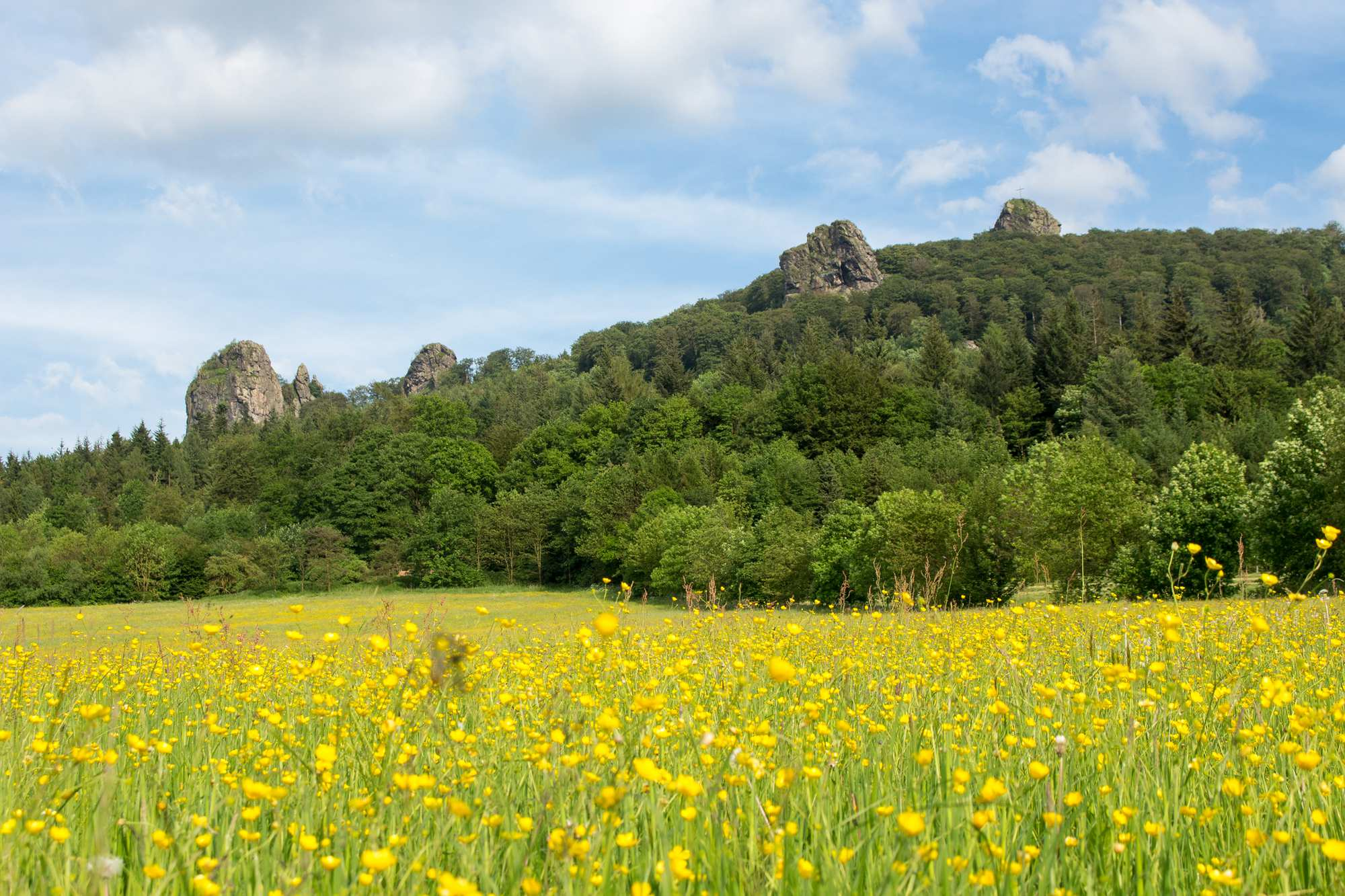 Über die Kämme des Rothaargebirges
