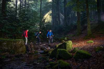 Cross-hiking the Black Forest