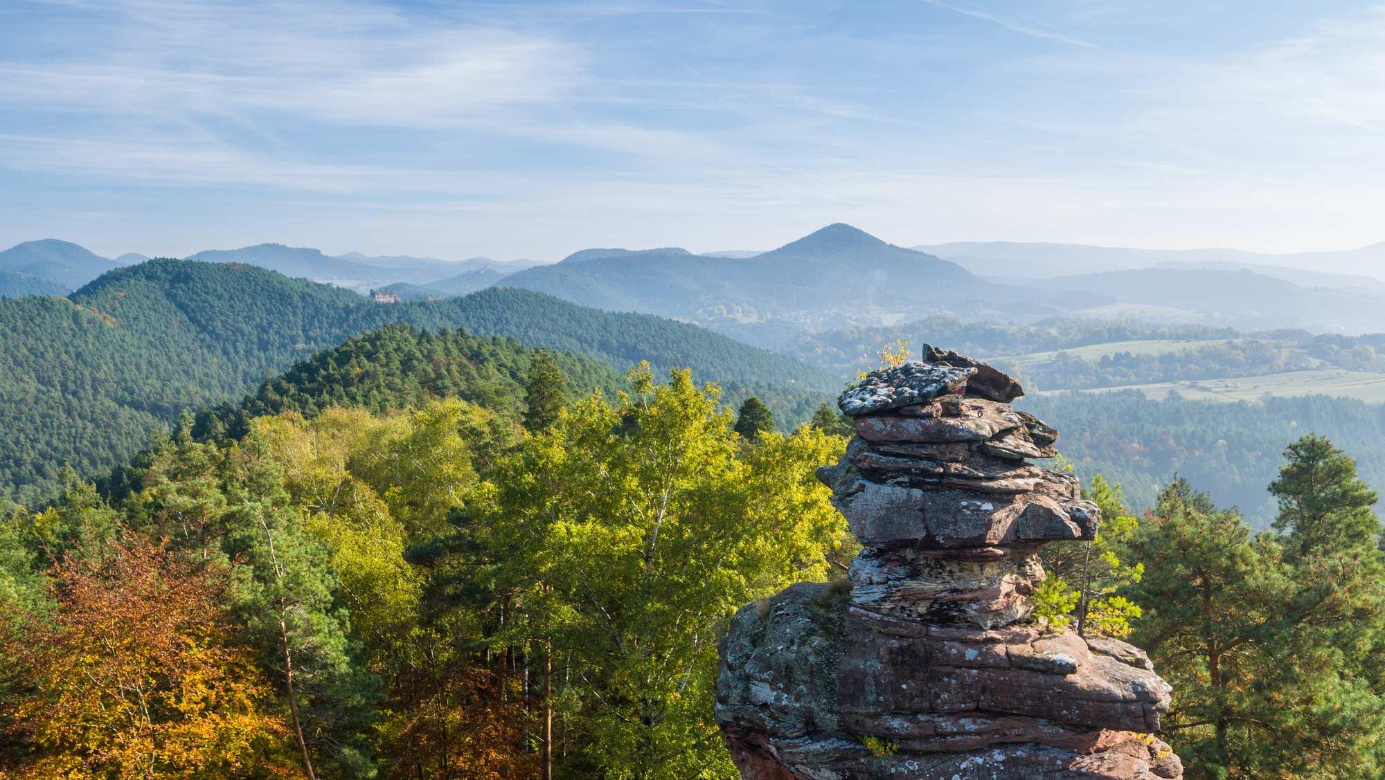 Pfälzer Wandermenü – Tages- und Halbtagestouren