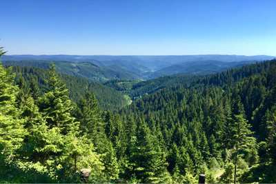 Through deep forests and bright heights - 7 days hiking through the Black Forest