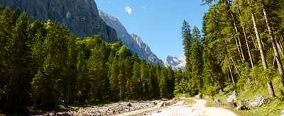 Der Maxweg – einmal quer über die Alpen