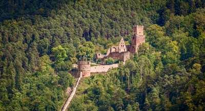 Der Nibelungensteig – mit großen Helden im Odenwald