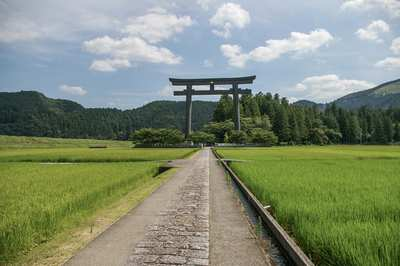 Kumano Kodo – a pilgrimage in the sacred forests of Japan