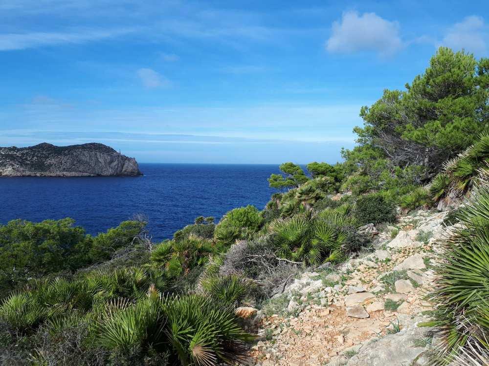 Trailgeballer Statt Ballermann Mountainbiken Auf Mallorca