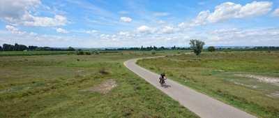 Lake Neusiedl cycle path – three days, two countries, one lake