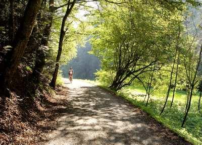 Durch traumhafte Natur im Thermenland Steiermark radeln