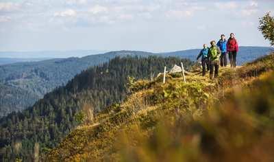 Wanderabenteuer im Hochschwarzwald