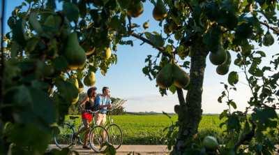 Die schönsten Radtouren in Belgien