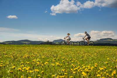 Experience Eastern Styria on two wheels